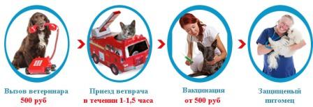 vakcinacia_zhivothyn_banner.jpg